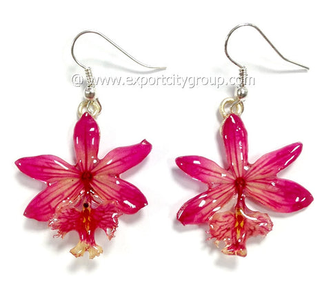 Epidendrum Orchid Jewelry Earring (Pink)