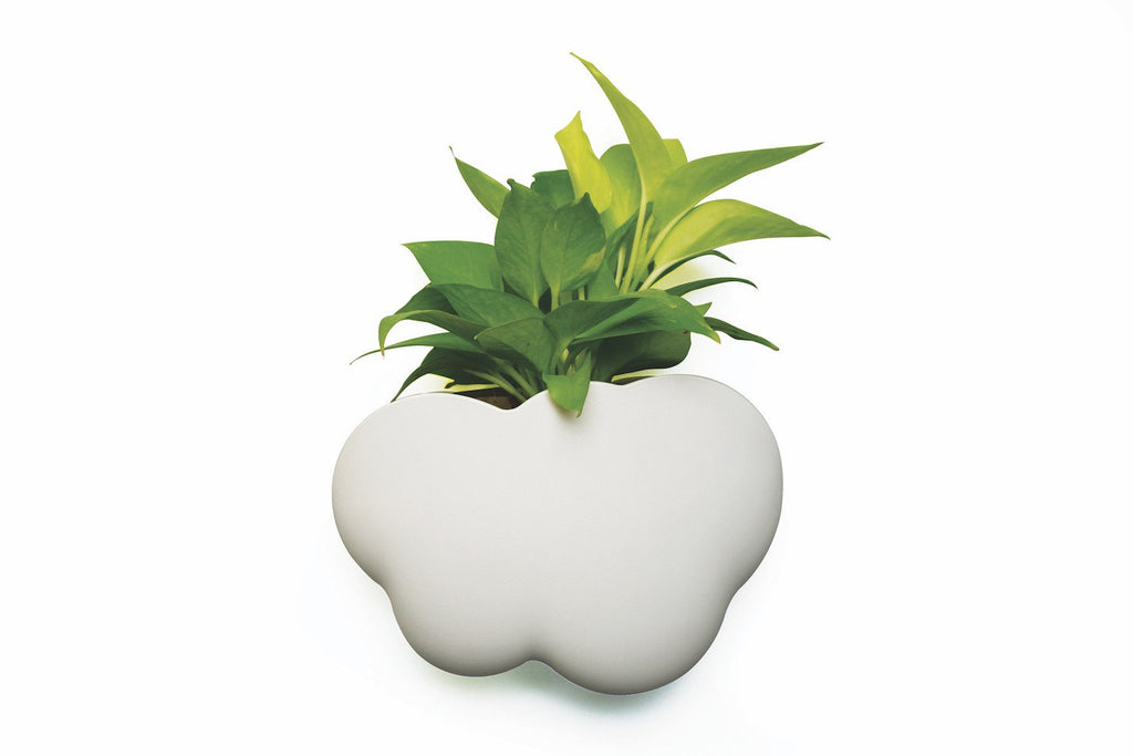 Cloud Pot