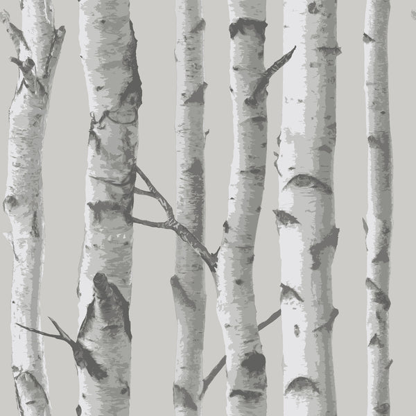 Mountain Birch Grey Peel and Stick Wallpaper