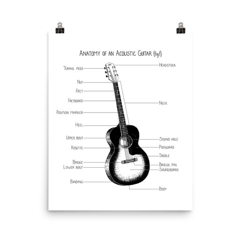 Anatomy of an Acoustic Guitar (fig 1)