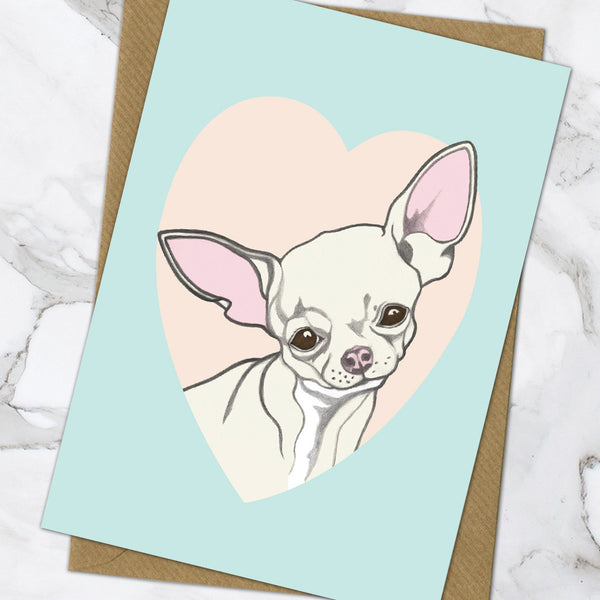 Chihuahua (Pack Of 6)