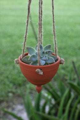 Air Plant/Succulent Hanging Planter.