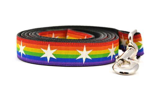 Rainbow Pride Six Point Star Dog Leashes