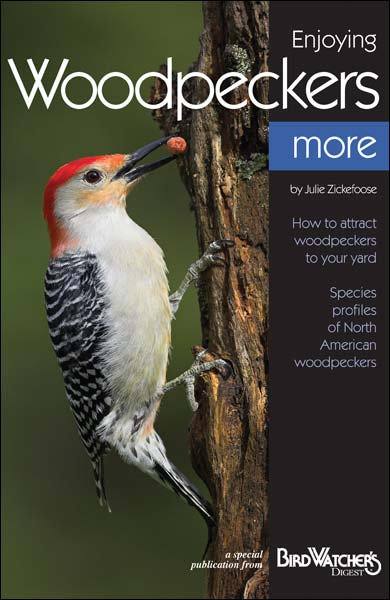First Issue of Bird Watcher's Digest