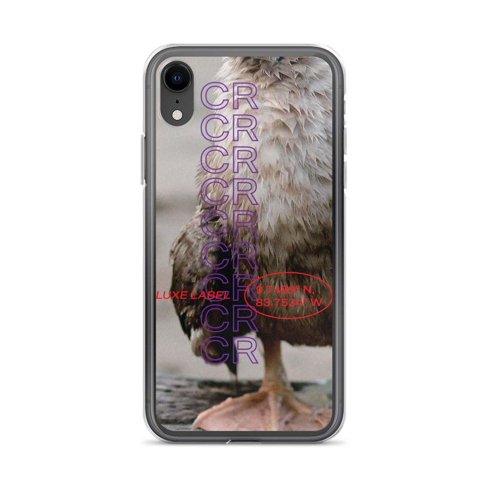 Feathers iPhone Case