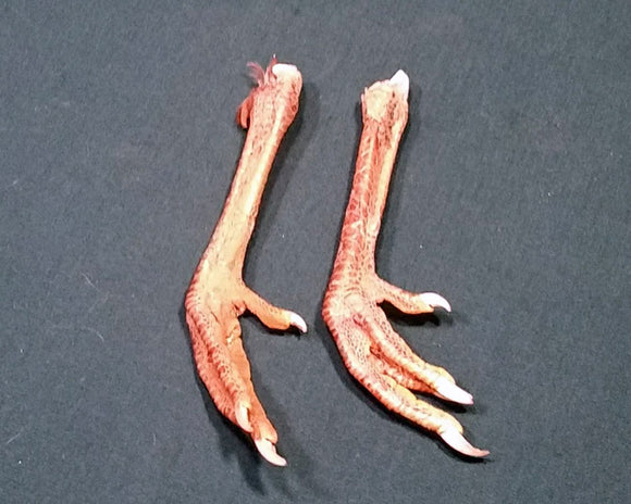 Chicken Feet - Rooster Feet