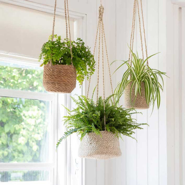 XL Jute Hanging Planter