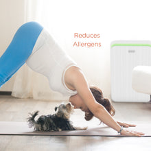Aprilaire Allergy Air Purifier with 3-Stage Filtration