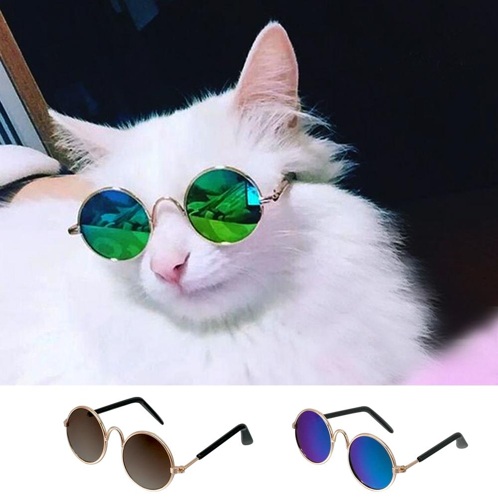 Fashion Cat Sunglasses