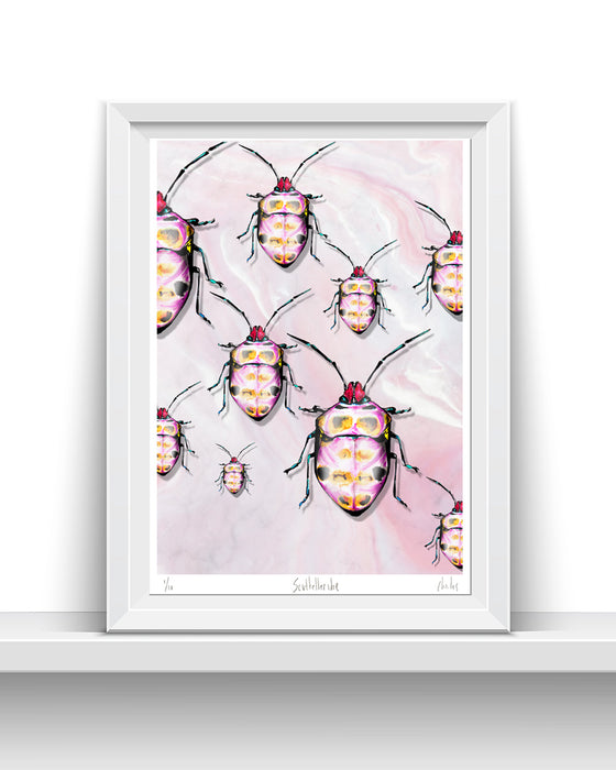 Pink Scutelleridea | A3 Signed edition of 10