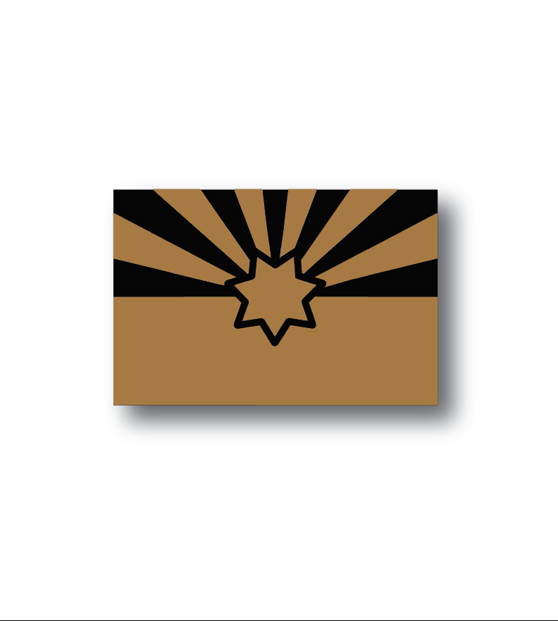 LIMITED AZ DPS STICKER