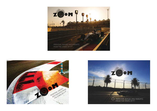 3 ZOOM BOOKS - 2015, 2016 & 2017