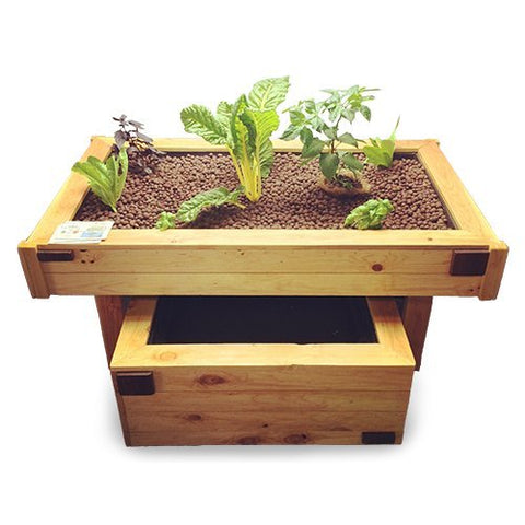 Image of AquaBox Complete Aquaponics Kit