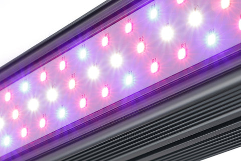 Image of KIND LED X Series XD75/XD150 LED Bar Indoor Grow Light