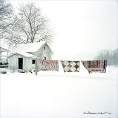 HOO100 - Quilts in Snow - 12x12