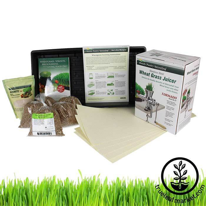 Hydroponic Wheatgrass Kit + Tornado Juicer