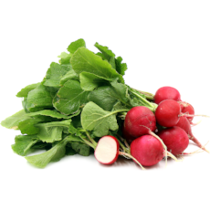 Radish (Bunch) - Virgara Fruit & Veg, Adelaide wide free fresh fruit & veg delivery