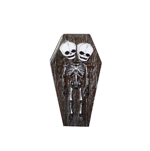 Skeleton Twins Coffin Pin
