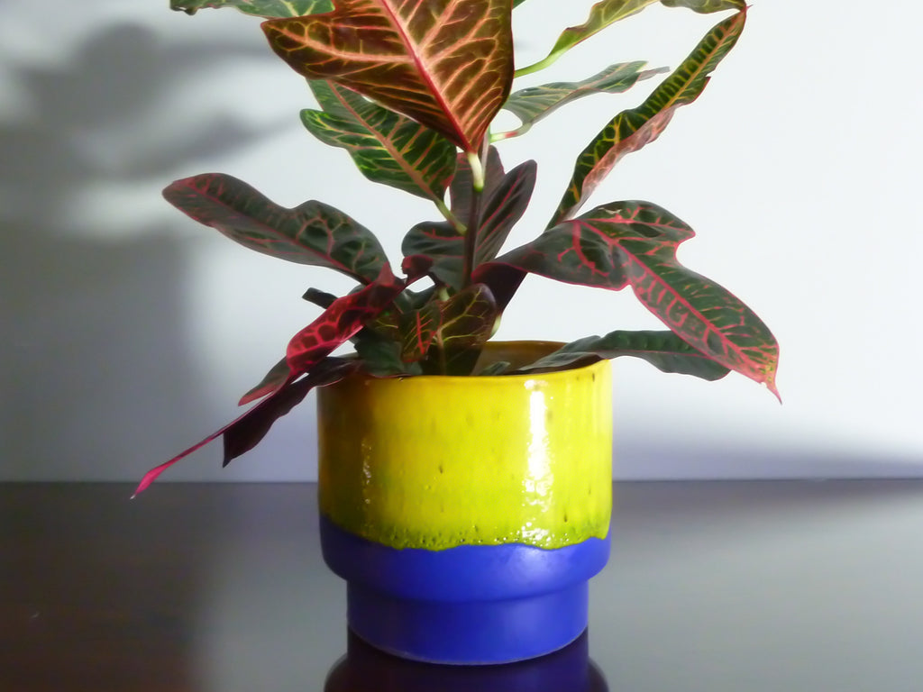 Klara indoor plant pot, bright dripping yellow on matt blue