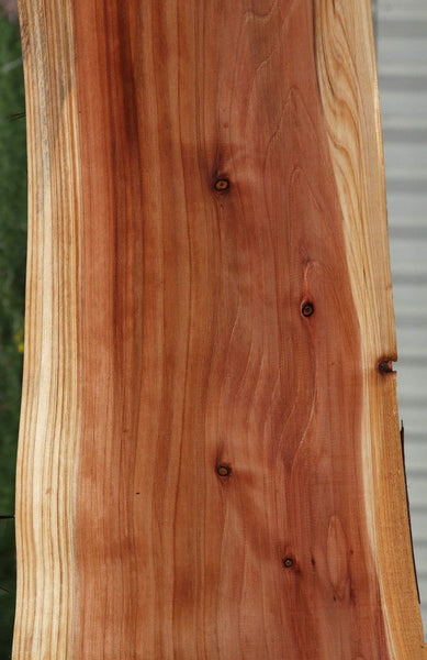 Redwood Slab