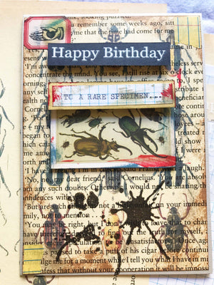 Vintage Insect-themed Birthday Card Using 'Stains' Clear Stamp