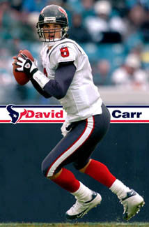 "David Carr ""Super Action"" Houston Texans Official NFL Football Wall POSTER - Costacos 2005"