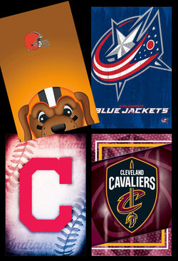 Cleveland, Ohio Sports 4-Poster Combo Set (Browns, Indians, Cavaliers, Blue Jackets)
