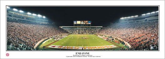"""End Zone"" (Florida State vs. Clemson) - Everlasting Images"