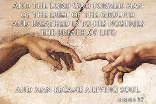 Genesis 2:7, Michelangelo's Hands of Creation - Eurographics Inc.