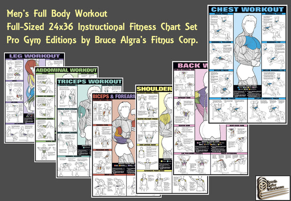 COMBO SET - Men's Full-Body Strength Training Workout 7-Poster Professional Fitness Wall Chart Set