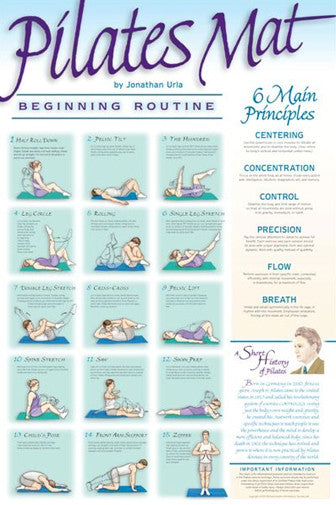 Pilates Mat Workout (Beginning Routine) Fitness Wall Chart Poster - VHI