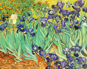 Irises (1889) by Vincent Van Gogh 16x20 Art Print - Eurographics
