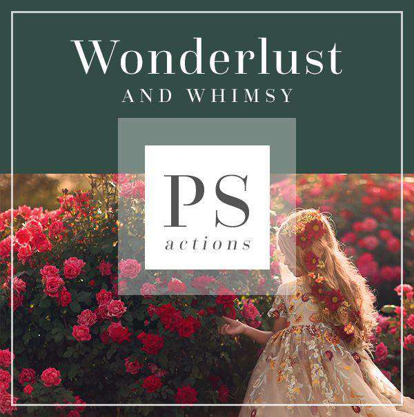 Wonderlust & Whimsy Collection