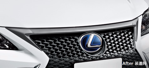 Genuine Lexus Japan 2014-2017 CT Front Grille Upper Black Chrome Garnish