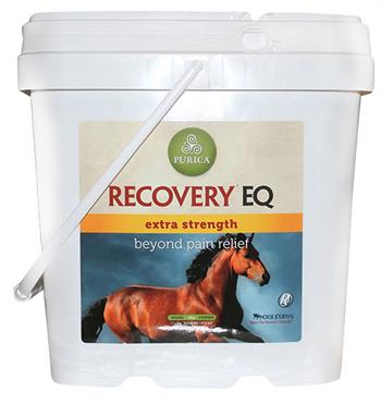 Recovery EQ Extra Strength – 5 KG