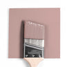 Benjamin Moore Colour CC-8 Frosted Berry wet, dry colour sample.