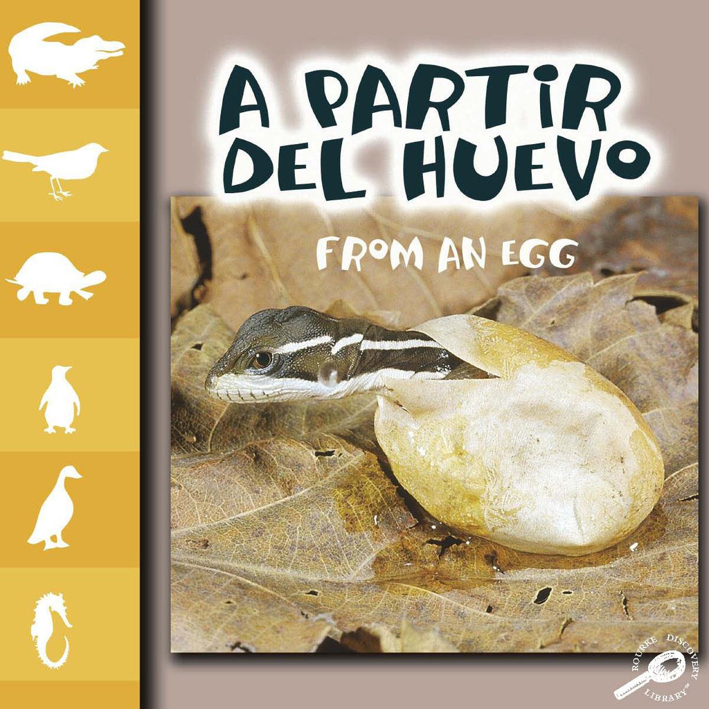 2007 - A partir del huevo (From An Egg) (Paperback)