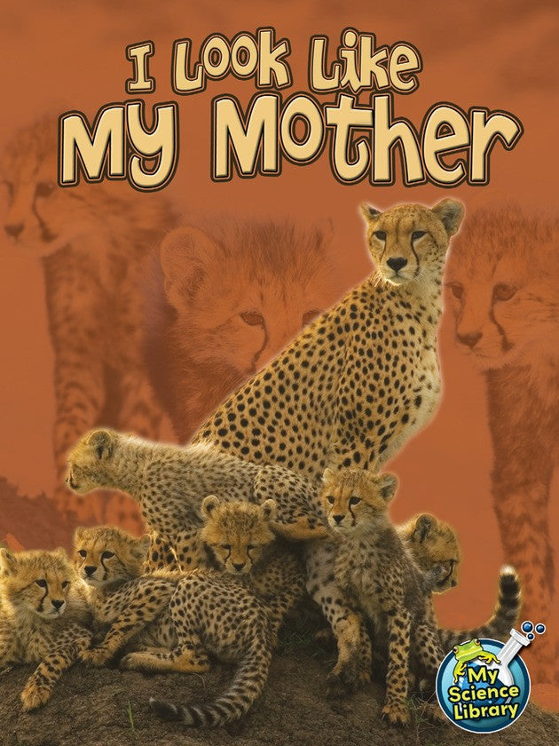 2013 - I Look Like My Mother (eBook)
