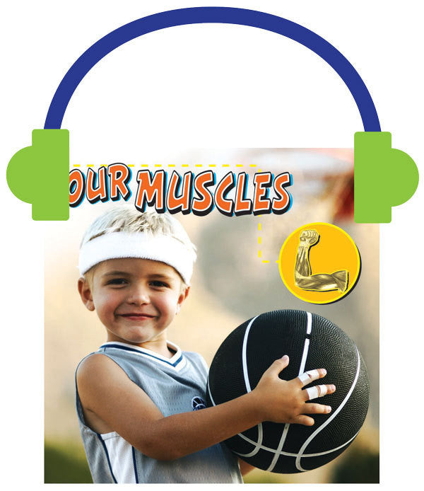 2013 - Our Muscles (Audio File)