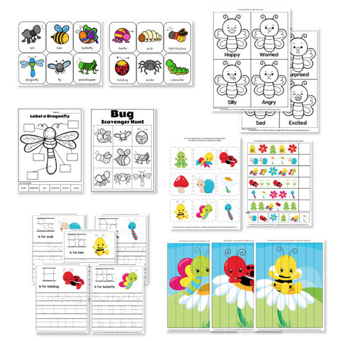 insect worksheets