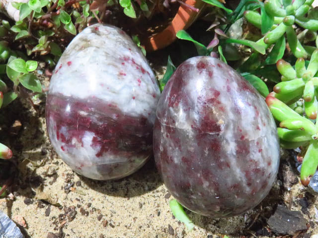 Polished Eudialyte Eggs x 6 from Madagascar - TopRock