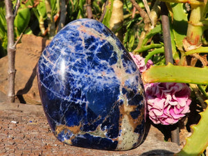 Polished Sodalite Standing Free Forms x 2 from Kunene, Namibia