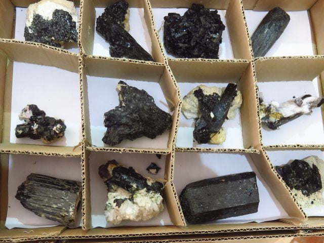 TRAY OF NATURAL BLACK TOURMALINE SPECIMENS x 12 from Namibia, Erongo