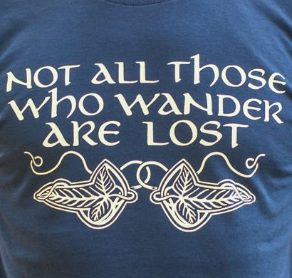 Not All Those Who Wander Are Lost - T-Shirt (Mens)