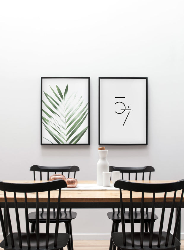 Modern minimalist poster by Opposite Wall with Sunlight palm leaf photo art - Dining room