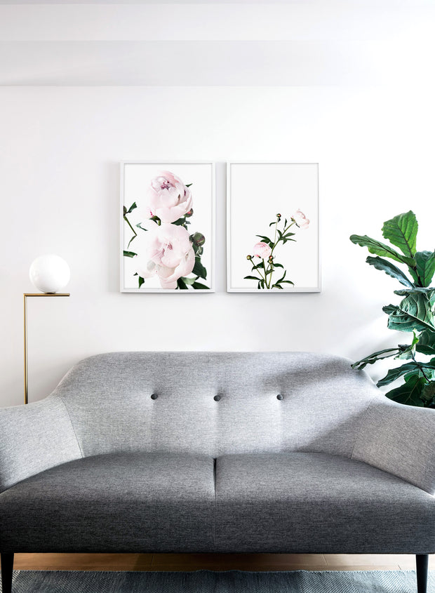 Scandinavian art print by Opposite Wall with delicate peonies Lovers art photography - Living room with a sofa