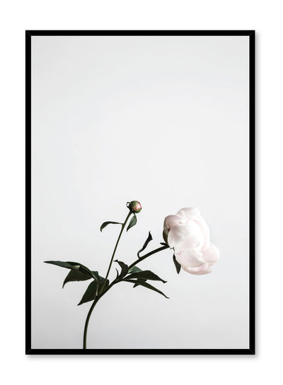 Modern minimalist art print by Opposite Wall with trendy floral art photo Hope