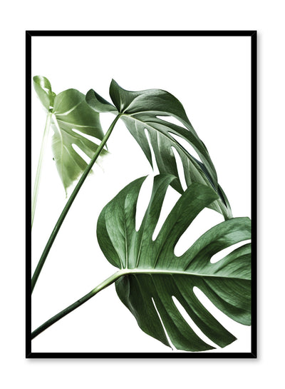 Scandinavian art print by Opposite Wall with with Monstera leaf photo Three's a charm.