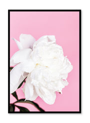 Minimalist poster by Opposite Wall with botanical Loveliness art photo