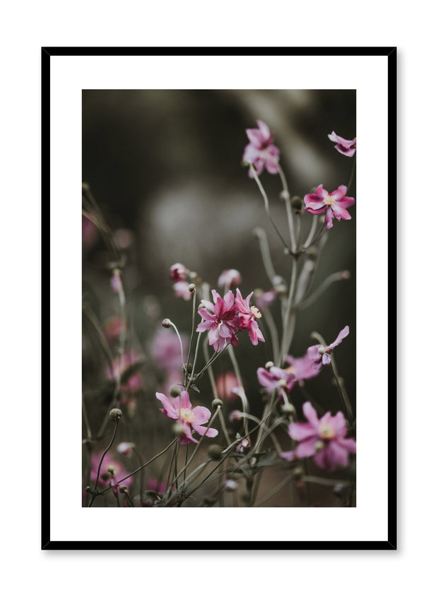 Minimalist design poster by Opposite Wall with flower photography